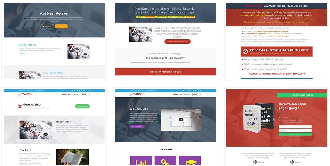 Salespro : Theme Landing Page Untuk CMS Wordpress